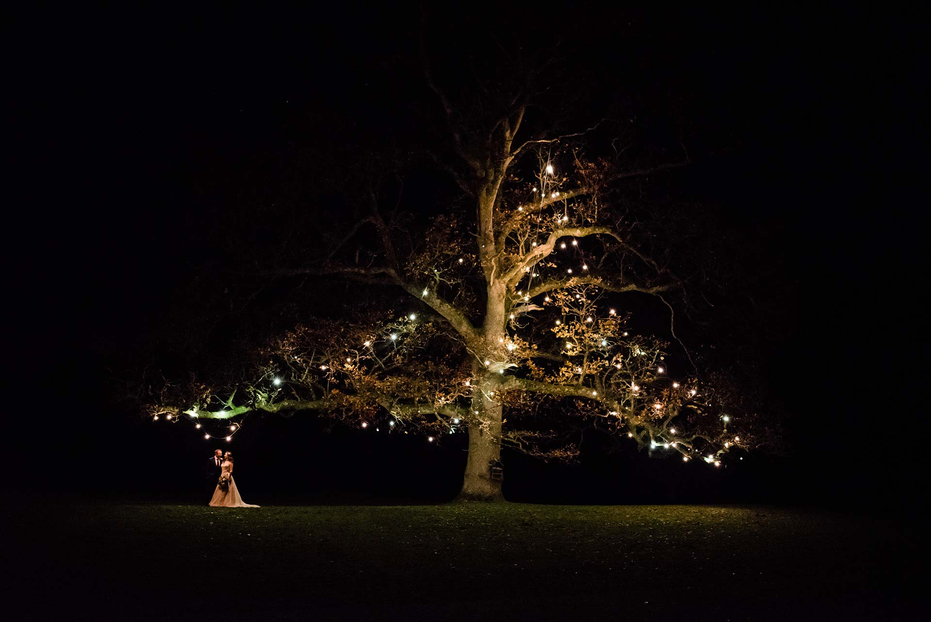 bride and groom stand under tree lit by Tuscan light bulbs