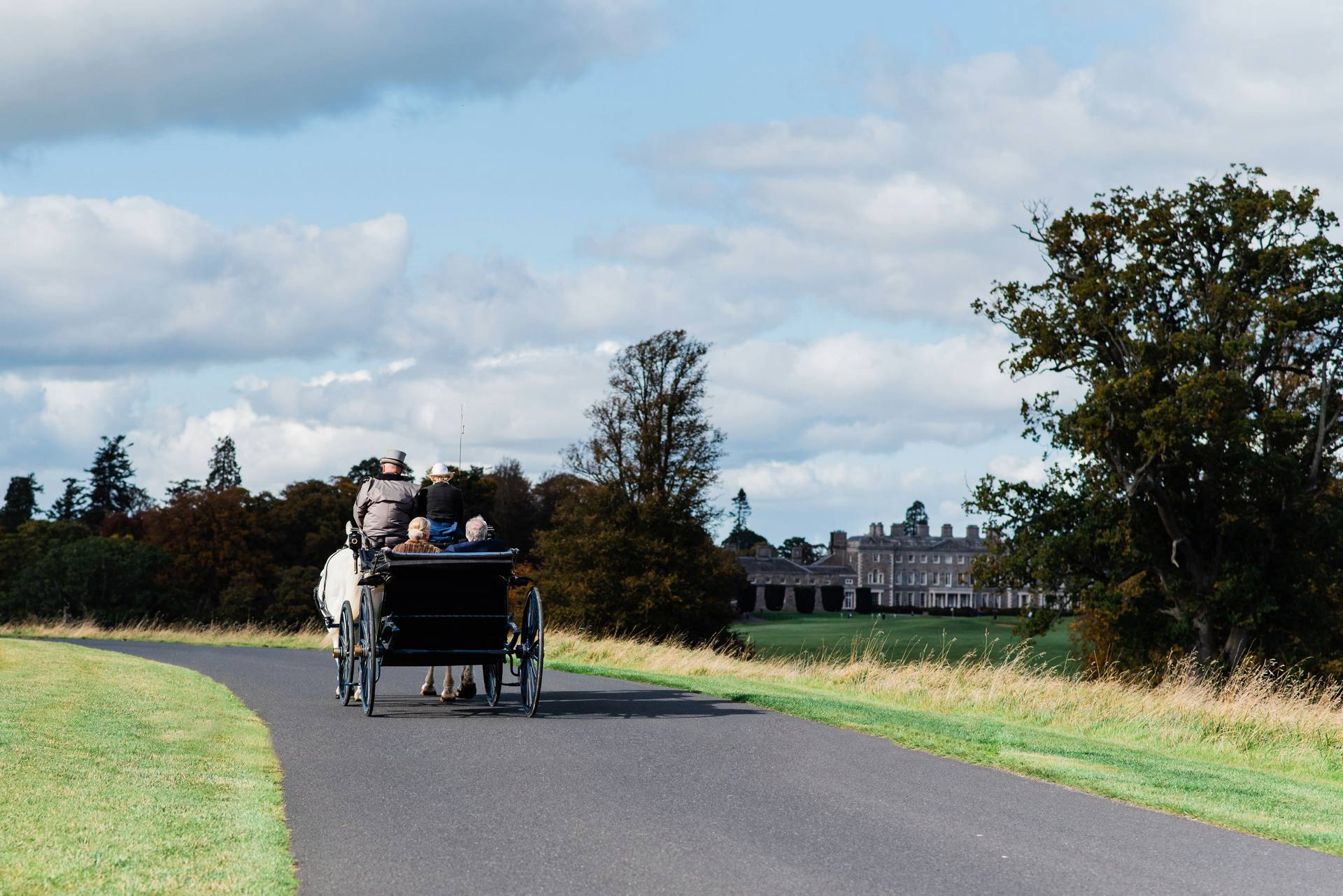 Horse and carriage at Carton House